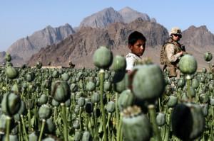 США – Афганистан: проблема наркотиков