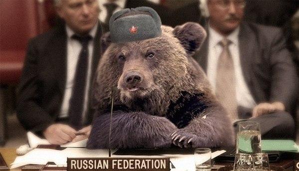 20140422130636!Russkij-medved-9